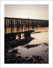 Decaying pier VIII (Christa (ch-cnb)) Tags: longexposure sea seaweed norway pier norge decay olympus norwegian pro fjord trondheim zuiko decaying omd trndelag ranheim trondheimfjord microfourthirds mzd1240mm em5mkii