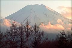 Fuji San (josboyer) Tags: japan san fuji mont japon