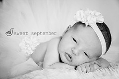 (Sweet September Photography) Tags: portrait bw baby girl sisters naturallight newborn headband