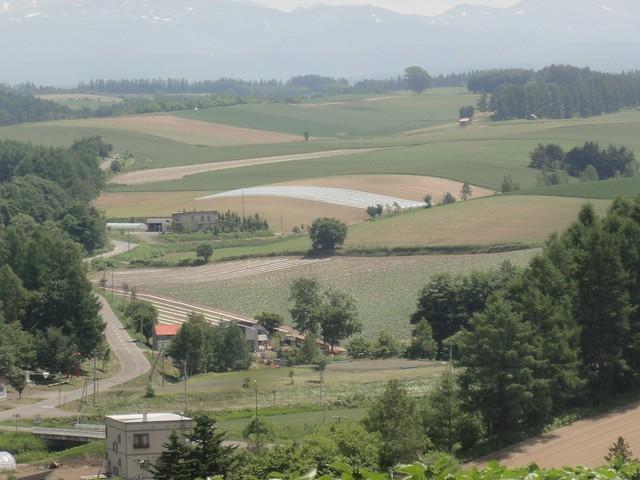 高台にあるので、眼下に広がる畑の広大な景色が楽しめます。 展望花畑 四季彩の丘