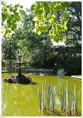 10-bassin square vermenouze