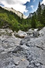 Kalkgestein und Wasser (vor morgen) Tags: mountains fauna landscape austria natur struktur structure berge holz landschaft bume heimat bergwelt klimawandel nativecountry lebensrume