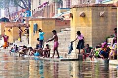 Just looking! (Dick Verton) Tags: travel woman dog india water river women asia sitting streetscene laundry sit varanasi seated washing streetview sadhu ganges ghats streetshot dickverton