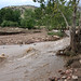 Damage to Fourmile Canyon trailhead