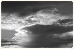 Anvil (Zelda Wynn) Tags: storm weather blackwhite skies scenic auckland artgalleryofnsw avondale cloudscape troposphere inspiredbyalfredstieglitz zeldawynnphotography