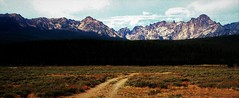 ROAD TO THE RANCH / Idaho (The VIKINGS are Coming!) Tags: trees mountain forest idaho alpine wildwest sawtoothmtns beetlekill cattleranch podhale ranchesfarms