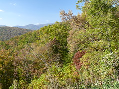 Asheville NC 10 27 13 035 (Apartment 4 G Photography.....) Tags: leica blue trees people mountains photo ray asheville ridge parkway rivera buncombecounty rayriveraphoto ashevillenc102713