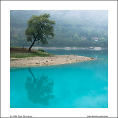 One Tree Two Tree (Ilan Shacham) Tags: italy lake reflection tree water beauty clouds square landscape outdoors view turquoise fineart scenic symmetry fineartphotography tenno lagoditenno