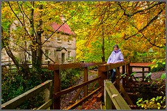 Falling Foss Tea Room (Box Brownie Brian) Tags: bridge green yellow gold waterfall cafe woods autum yorkshire north falls autumncolours moors northyorkmoors tearoom foss woodenbridge autumnal northyorkshiremoors fallingfoss