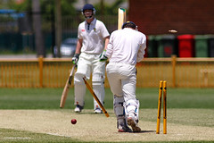 Out! (The0dora Photography) Tags: sport cricket sigma300mmf28 theodoraphotography canon5d3