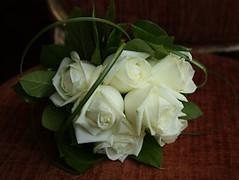 "Wedding Flowers Coventry - Nuleaf Florists <a style=""margin-left:10px; font-size:0.8em;"" href=""http://www.flickr.com/photos/111130169@N03/11309970084/"" target=""_blank"">@flickr</a>"