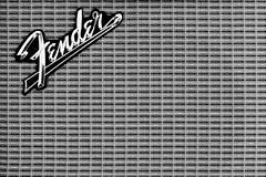 Day 15 - Fender (Kustoms On Silver/Ashley Hoff) Tags: sony amp fender a700 minoltaaf50mmf17 silverefex