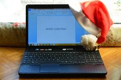 Julud Salzburgis (anuwintschalek) Tags: christmas winter salzburg weihnachten austria december laptop talv arvuti julud 2013 18200vr d7k nikond7000 bywanda