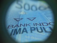 DSCN0353 [1600x1200] (siputlutju) Tags: macro tengu duit
