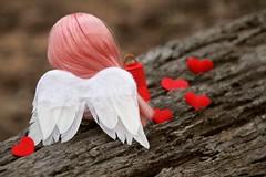 This Valentine's Day....