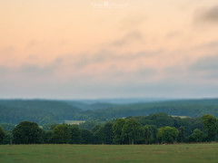 Valle au petit matin (David-Martinelli-Photos.net) Tags: bretagne breizh campagne fort bzh brocliande pllanlegrand