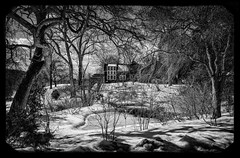 The Talented Mr. Ripley (brev99) Tags: trees winter house landscape shadows border trellis vignette filmgrain bamboohouse wetrocks niksoftware ononesoftware hdrlook silverefex sigma1770os perfecteffects8