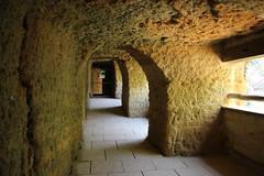 BIOPARC DOUE LA FONTAINE (14) (PURÊN MICHEL 49) Tags: zoo tunnel caves tunel grotte sousterrain troglodite troglodites bioparc douelafontaine sousterrains bioparkdouelafontaine