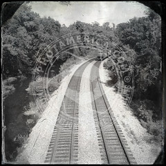 VIRGINIA-891
