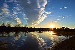 Flooded Reflection (D~P~B) Tags: park sunset sky sun reflection fall nature water colors field rain clouds mirror nikon flooding colorful natural flood florida walk peaceful calm zen serenity hudson nikkor nikkor18200m nikond5300