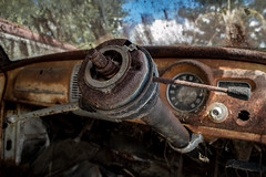 Steering Challenge (darkday.) Tags: wood old urban woman hot sexy brick cars ford abandoned love broken glass beautiful field grass car danger naughty concrete photography graffiti foxy photo moss smash rust breasts pretty risk legs decay steel butt extreme descent sunny australia brisbane bum dirty chick adventure explore jeans dirt mum mature dash urbanexploration infiltration attractive qld queensland tight aussie dust exploration seeker milf steeringwheel fit thrill ue caryard urbex queenslander milfs abando brisbaneurbex placehacking australianurbex queenslandurbex