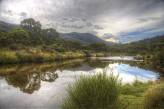 river reflections (Daedalus-) Tags: reflection water grass clouds canon river bush cloudy overcast australia efs1785mmf456isusm thredbo thredboriver canon40d