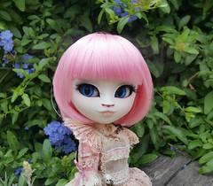 Lady Dorothy (GroovyBlue) Tags: pullip custom custompullip ladydorothy misskittywhite requiemart