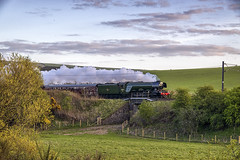 Flying Scotsman Over The Border (Colin Myers Photography) Tags: man colin train photography scotland countryside flying scottish steam locomotive borders scots steamtrain myers scotsman flyingscotsman steamlocomotive 4472 scottishborders theborders 60103 colinmyersphotography wwwcolinmyerscom flyingscotsmantrain