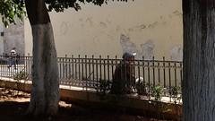 taking a rest (pix-4-2-day) Tags: street scene casablanca morocco man rest pause break mann mtze baseball cap base sun shade schatten sonne baum tree zaun fence blue blau pix42day
