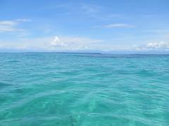 "Bocas del Toro: prêts pour le snorkeling ? <a style=""margin-left:10px; font-size:0.8em;"" href=""http://www.flickr.com/photos/127723101@N04/26726390634/"" target=""_blank"">@flickr</a>"
