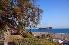 DSC04845 (deerhake.11) Tags: santamonica beach