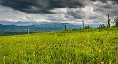Easter day view () Tags: flowers holiday mountains clouds easter landscape photography hiking fields         centralbalkannationalpark  margatina