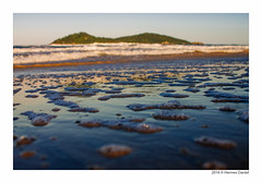 (HermesDaniel) Tags: brazil praia beach brasil florianpolis santacatarina campeche