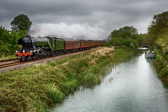 Scotsman at Crofton (D1059) Tags: canal pacific a3 kennetandavon flyingscotsman crofton britishrailways 462 gresley uksteam 60103 1z60 berksandhants catherdralsexpress 0837paddingtonsalisbury bridge99beechgrovelock