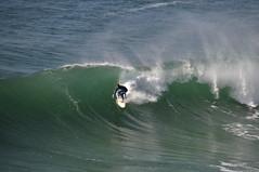 Quiberon - atana studio (Anthony SJOURN) Tags: beach studio sand brittany surf sable wave bretagne anthony cote cairns vague plage phare mouette oiseaux marins ecume ocan quiberon goeland atana sjourn niniches presquile