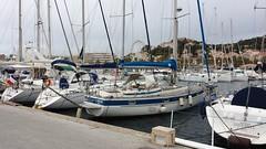 Le port du Lavandou (armandtroy906) Tags: france paca mai nathalie gilles denis 2016 lelavandou grandsurprise surprisepartie clubvarmer convoyageaulavandou