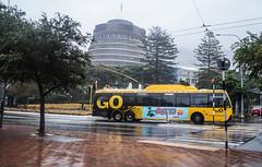 Lambton Quay (andrewsurgenor) Tags: city newzealand urban bus buses yellow electric busse transport transit nz wellington publictransport streetscenes omnibus trolleybus obus trolleybuses citytransport trackless nzbus gowellington