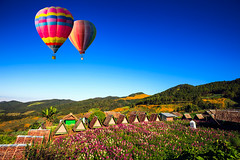 Colorful hot-air balloons (Krunja) Tags: travel blue sea summer vacation sky mist mountain hot color tourism nature beautiful up sport fog clouds landscape fun freedom fly high colorful day basket view ride bright outdoor background aircraft air hotair hill balloon flight scenic free sunny aerial adventure journey transportation leisure recreation rise float ballooning honglotusfields