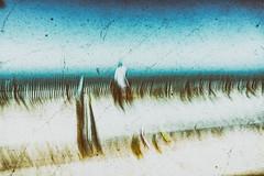 Les pieds dans le sable (Fabrice Le Coq) Tags: mer soleil eau sable bleu vague extérieur plage mélancolie fabricelecoq
