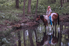 The Equus Effect (a4gpa) Tags: light horses horse love nature water yoga self heaven peace heart connecticut release sharon wanderlust program trust meditation emotional effect stillness development equus horsemanship freepeople congruent horsepeople ericwardphotography