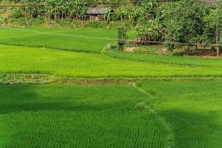 bac son - vietnam 11
