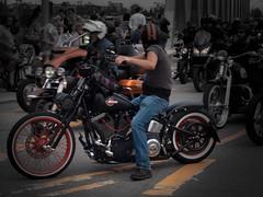 Biker bei den Harley Days (dieterkolm) Tags: harley davidson dieter kolm hamburg biker motorrder
