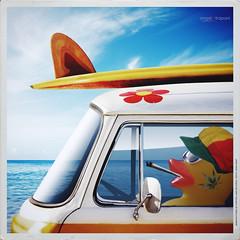 eeehhh... Marjaah Marjaaah  (Angelo Trapani) Tags: duck surf mare rasta viaggio papero storia ducktales avventura marjah
