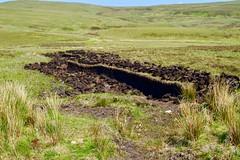 Peat Cutting (rustyruth1959) Tags: green grass landscape scotland nikon isleofskye outdoor dry peat highland blade nikkor moor vegitation tool slices nikond3200 peatcutting tairsgear