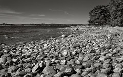 Rocky Beach (Look at the Birdie!) Tags: sten archipelago skarprunmarn lgvatten kattskallar
