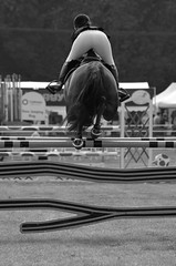 Mid Jump (dhcomet) Tags: show county horse sport midair hertfordshire redbourn equine agricultural showjumping herts 2016 showground