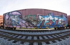 PAWN TEXER (TRUE 2 DEATH) Tags: railroad train graffiti tag graf trains railcar alb railways railfan freight pawn freighttrain rollingstock texer benching freighttraingraffiti