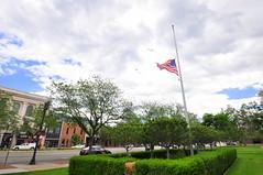 Half staff on Flag Day (Great Salt Lake Images) Tags: city urban utah flag ogden flagday halfstaff photowalking