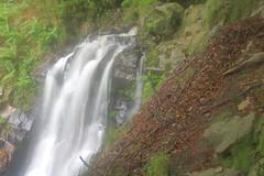 Parque natural de #Gorbeia #Orozko #DePaseoConLarri #Flickr -113 (Jose Asensio Larrinaga (Larri) Larri1276) Tags: 2016 parquenatural gorbeia naturaleza bizkaia orozko euskalherria basquecountry