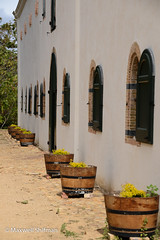 Side of the museum building at Groot Constantia